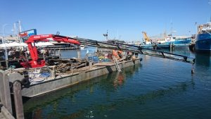 Fremantle Fishing Boat Harbour  Sea Bed Clearing with Divers